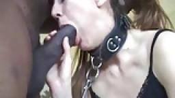 Femme blanche en laisse se prend sa première grosse bite noire