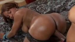 Salopes lesbiennes blacks baisent avec un gode ceinture