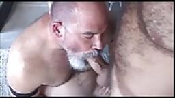 Deux vieux chauves poilus