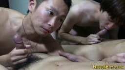 Un groupe de gays asiatiques se sucent la queue hd #03