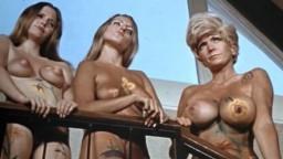 Porno vintage américain - Prison girls (1972) - Film complet - Vidéo hd