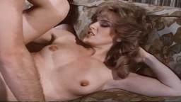 Porno vintage américain - Sex Play (1984) - Film complet - Vidéo hd